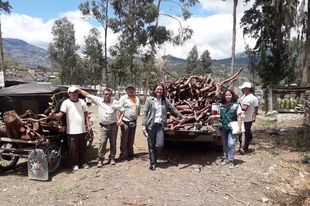Huancabamba: entregan madera decomisada para construcción de mobiliario escolar - El Regional