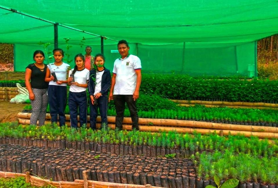 Huancabamba: impulsan campaña de reforestación en San Miguel del Faique - El Regional